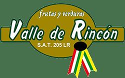 Empresa Valle De Rincon Logo